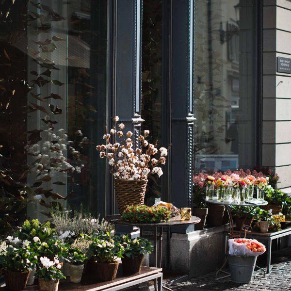 November Days in Zurich
